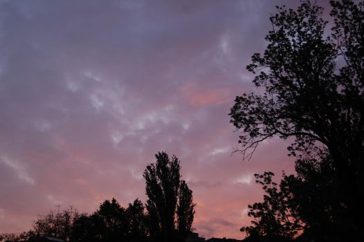 the sky was pink by psychochiller