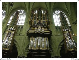 A beautifull organ by gjrfoto