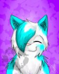 fluffy blue by Wildface97