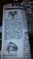 Funny rolled news paper by Juliusrabbito
