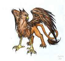 Griffin by KattCattis