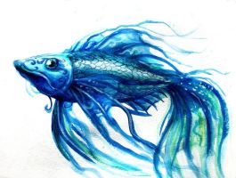 Blue Fish of Dreams by elicenia