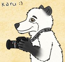 gift art for karu by IvanTheLoneWolf