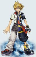 A Good Other_Roxas and Sora by SolitaryGrayWolf