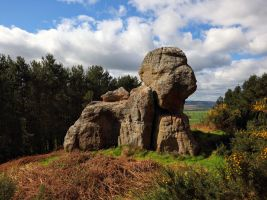 Dog Rock by scotto