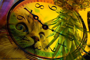 One Cat One Fruit One Clock by imikaya