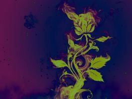 Fire Rose 2 by NomNom2010