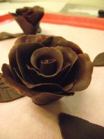Rose Chocolate by TinaCaper
