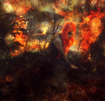 I'll take you down in flames by Andaelentari