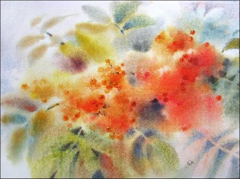 Ashberry by cmwatercolors