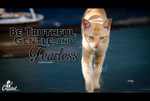 Fearless by crystalhaylie