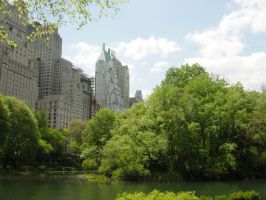 Central Park South by Arisingdrew
