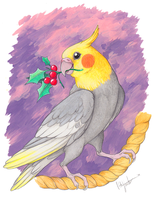 Cockatiel Christmas by CunningFox