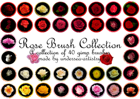 Rose GIMP Brush Pack by undersea-artistry