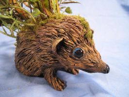 Hedgehog Fairy Shrubbery 3 by RavendarkCreations