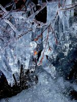 Ice sculpture III by N-o-B