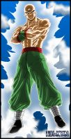 Ten shin han 02 by DBZwarrior