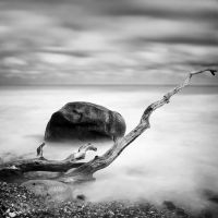 flotsam 7 by matze-end
