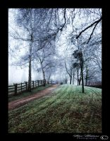 Frosty Walk by darkHunTer2009
