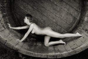The barrel 4 by jerrywhite