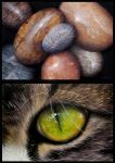 Pebbles and green eye by MiaSteingraeber