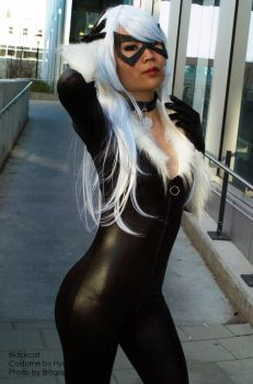 BlackCat 01 by Hyokenseisou-Cosplay