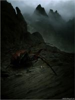 SHELOB by SHUME-1