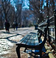 Benches 2 by 4drjdm