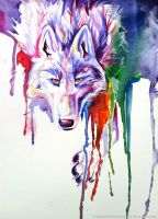 Rainbow Wolf by Lucky978