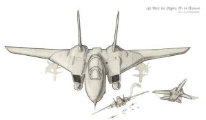 All hail the mighty F-14 by Naiyion