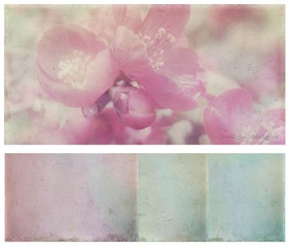 Vintage French Flair Textures by Mephotos