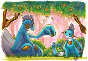 Mudkip, Swampert and Marshtomp by KenronToqueen