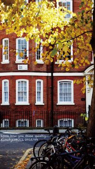 Quiet but Shining Autumn in London by Kloudyes