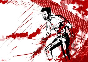The Wolverine by Deviant-Mizu