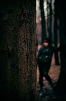 Darkened Forest II by vad3x