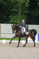 Dressage Stock - XI by Summerly