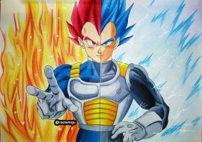 Vegeta Super Saiyan God | Super Saiyan Blue by razemqu