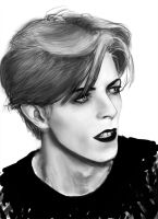 david bowie by herszi
