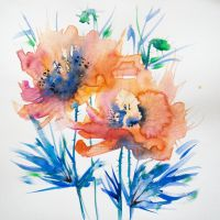 Poppies by ctacbko