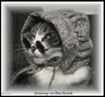 Granny in the Hood by Granny-Chobit