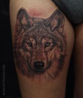Realistic wolf portait tattoo by Royal3