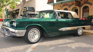 Green Thunderbird by StallionDesigns