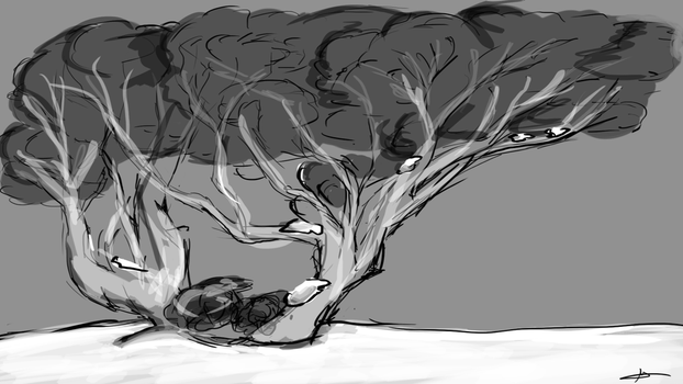 354 - Snow Gum by Shasel