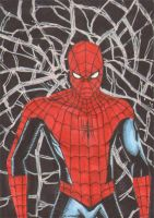 Spiderman PSC Commission by wheels9696