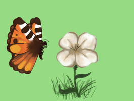 Butterfly by Dugters