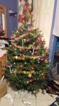 Christmas tree 2014 by Genbe89