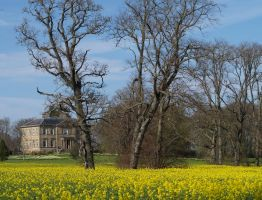 Newhall House, near Cromarty by piglet365