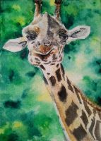 Giraffe - watercolor by Giselle-M