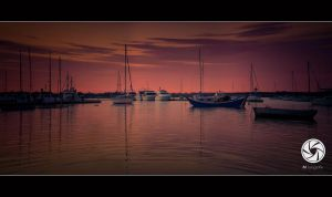 At The Marina by Mfotografie