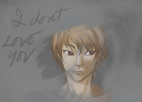 I don't love you by mannel1013